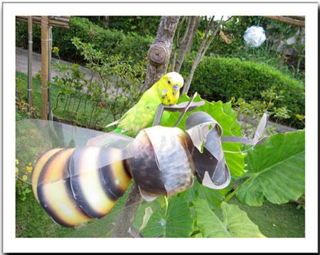 再紙蜜蜂上面