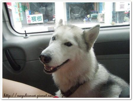 雪兒in car