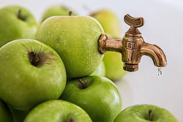 保留水果營養