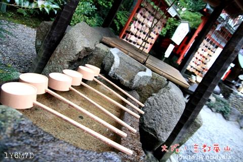 1116嵐山236.JPG