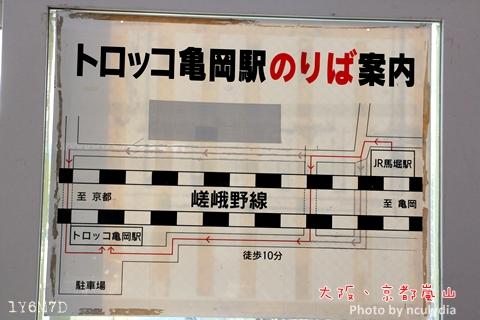 1116嵐山92.JPG