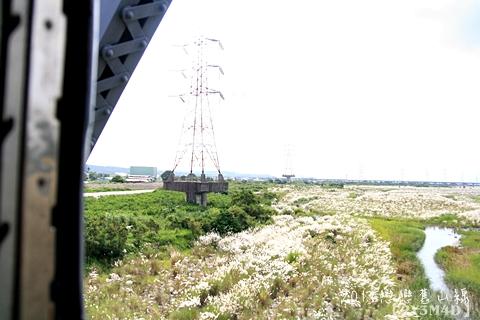 0813戀戀舊山線110.JPG