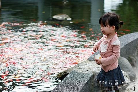1006花蓮縱谷32