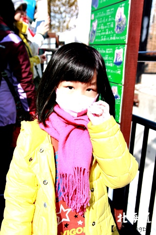 20150308旭山動物園札幌IBIS09.JPG