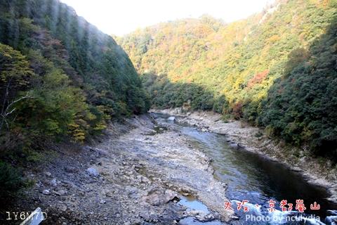 1116嵐山143.JPG