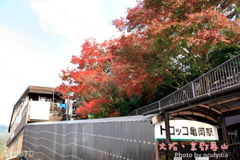 1116嵐山99.JPG