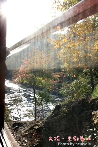 1116嵐山135.JPG