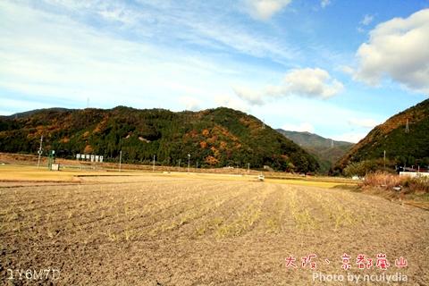 1116嵐山98.JPG