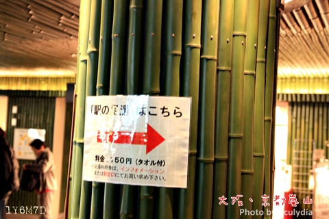 1116嵐山237.JPG
