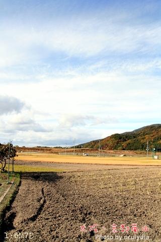 1116嵐山96.JPG