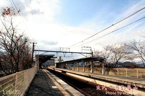 1116嵐山86.JPG