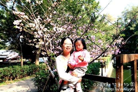 0207新竹動物園71.JPG