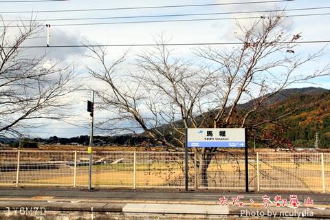 1116嵐山85.JPG