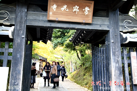 1116嵐山166.JPG