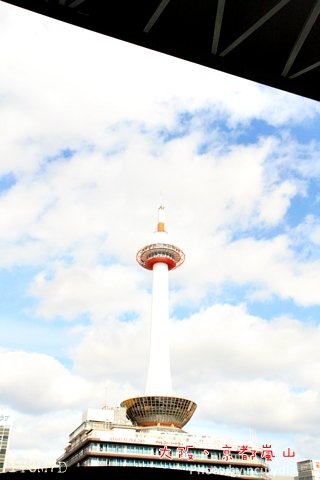 1116嵐山60.JPG