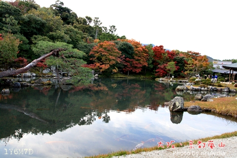 1116嵐山191.JPG