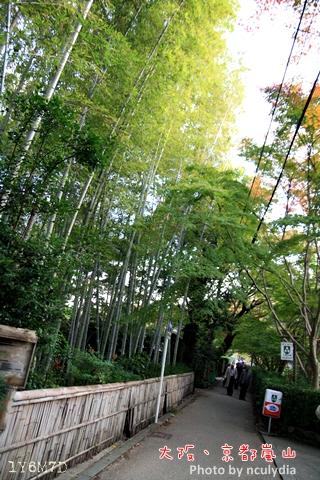 1116嵐山167.JPG