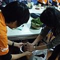 990410園藝治療工作坊-種艾草