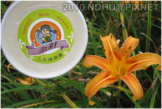20100820_玉里赤科山金針鮮奶冰淇淋外盒