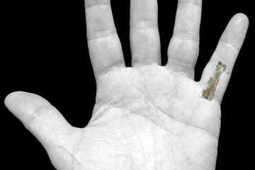 hominin-finger-bone