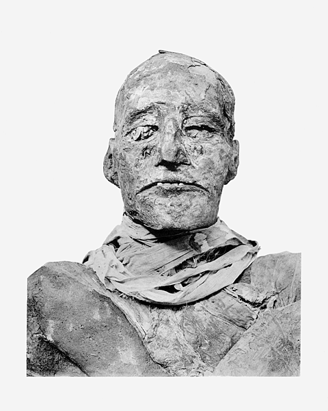 Ramses_III_mummy_head