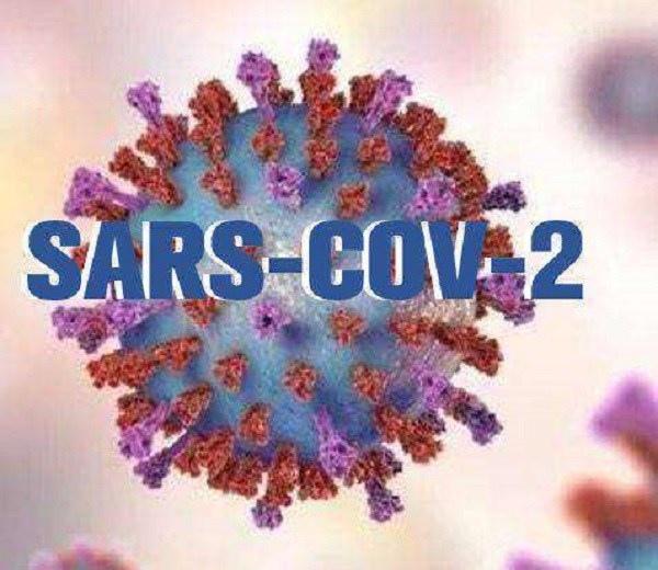 新型冠狀病毒的疫情遠勝SARS