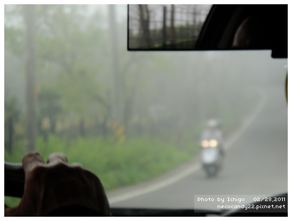 某段路超級霧,能見度不高
