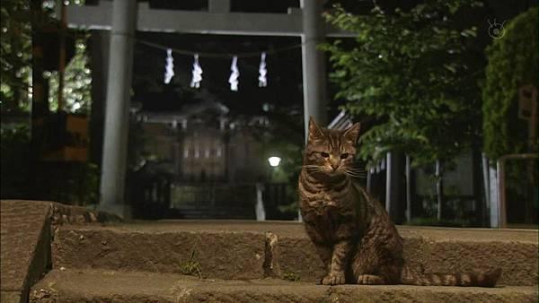 续·倒数第二次恋爱.Zoku.Saigo.Kara.Nibanme.no.Koi.Ep05.Chi_Jap.HDTVrip.1024X576-YYeTs人人影视[21-09-36]
