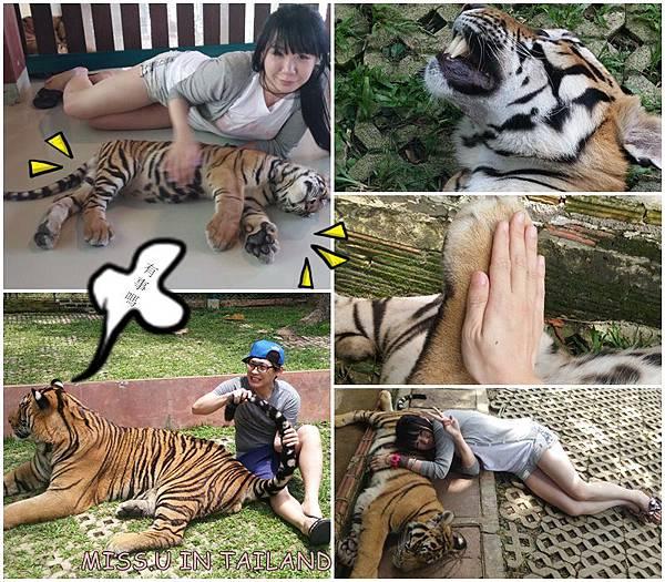♥泰國行程[英文歐杯共-miss.u 2015泰有趣杯木團]♥