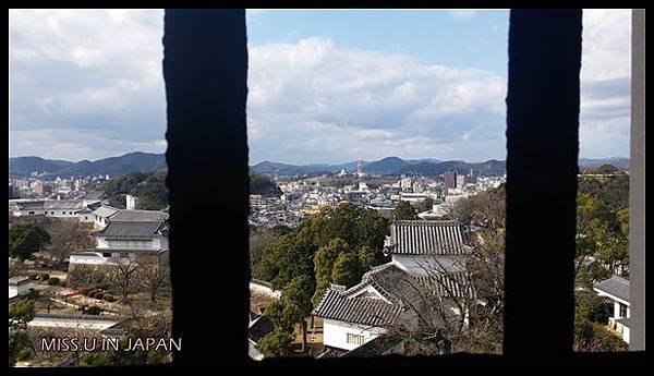 20160107_122911.jpg
