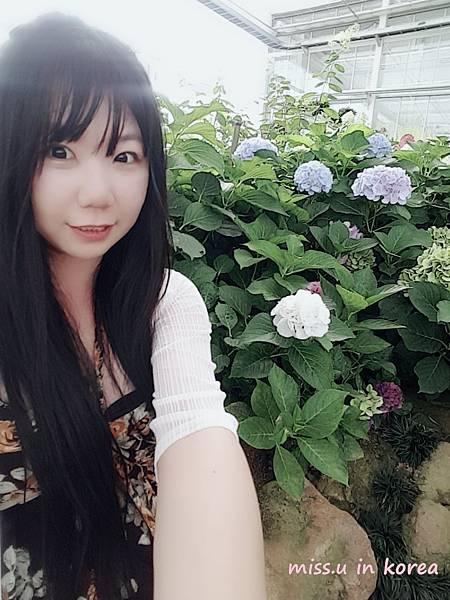 WuTa_2018-07-04_16-53-19.jpg