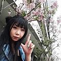 WuTa_2019-05-01_15-40-38.jpg