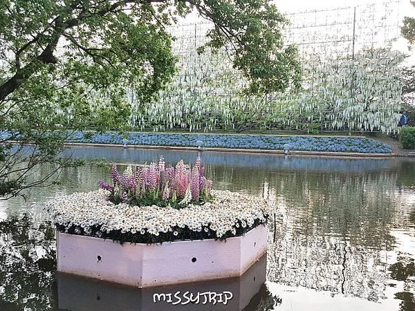 東京足立花園 (45).jpg