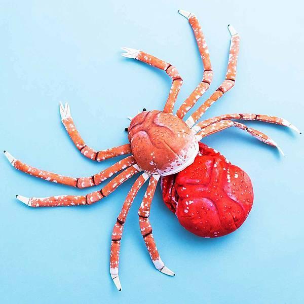 螃蟹脫皮瞬間7