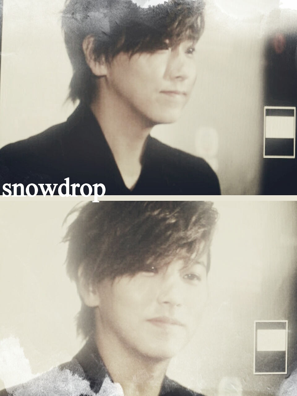 snowdrop-003