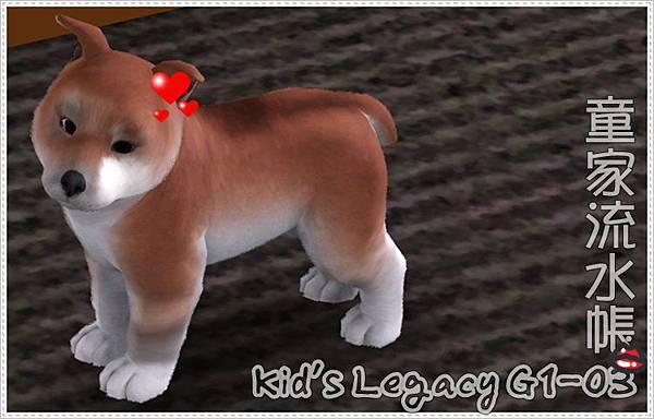 kids-banner-G103.jpg