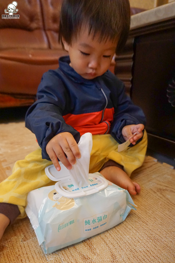 蘭韻濕紙巾 化妝棉 寶貝 純淨 好用 團購-07199.jpg