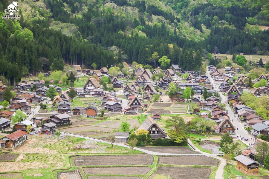 日本合掌村 日本旅遊 日本世界遺產-1015.jpg