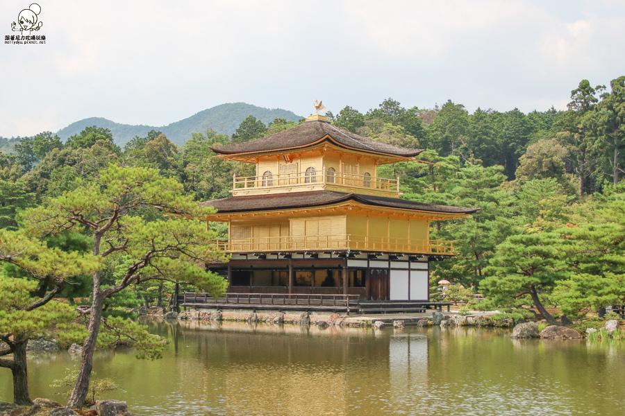 日本旅遊 金閣寺-2659.jpg