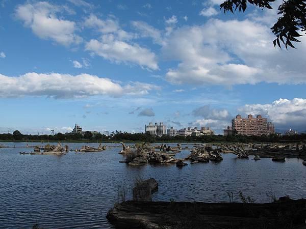 2010-09-10_063.jpg