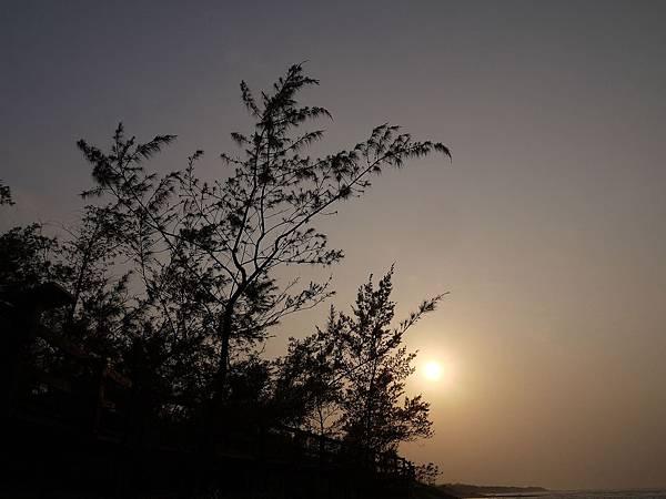 2010-12-30_096.jpg