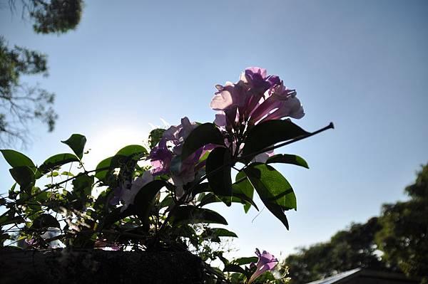 2010-09-26_32.jpg