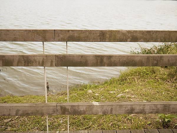 2011-02-26_15-40-53.jpg