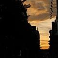 2010-08-29_104.jpg
