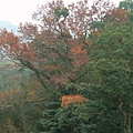 2008-12-28_26.jpg