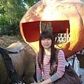 2009-01-29_05.jpg