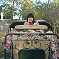 2009-01-29_12.jpg