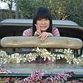 2009-01-29_13.jpg