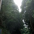 2009-07-12_11.jpg
