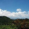 2009-07-12_31.jpg